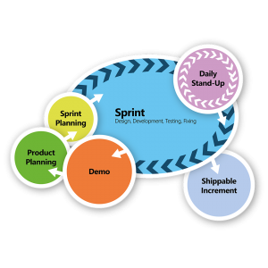 The Agile Process